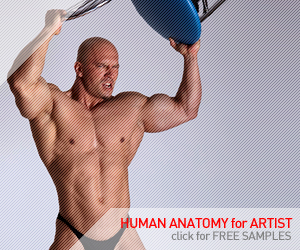 Human-Anatomy-for-Artist.com - Royalty free photo references